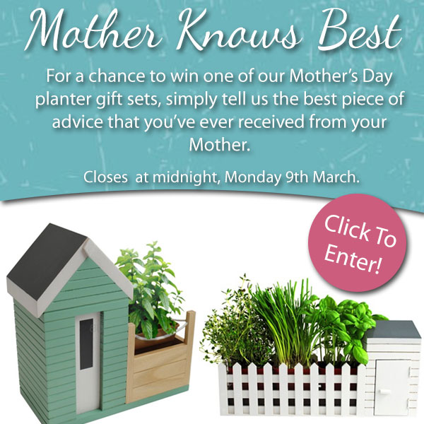 Mother_Knows_Best_Graphic_2