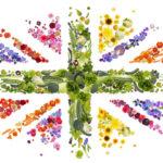 national gardening week2